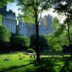 central-park-wallpaper-new-york-central-park-hd-wallpaper-desktop-xgurpvbs