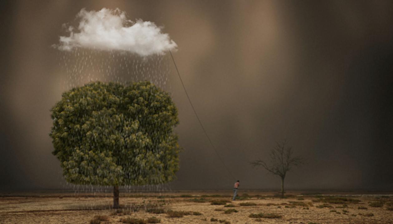 cropped-Larroseur-by-Hossein-Zare.png